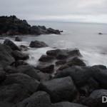 20121109-DSC_2331