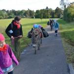 Zwei Eselinnen und vier Frauen auf dem Weg