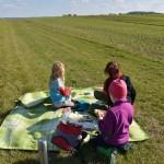 Picknick am Feldrand
