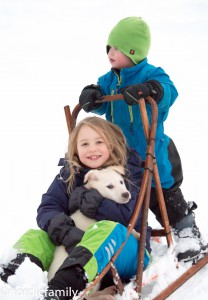 nordicfamily_dogsled