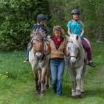 Schau mal Pferde Kindergeburtstag