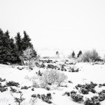 Crosscountry im Venabufjell