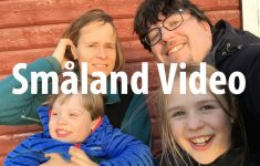 Småland Video
