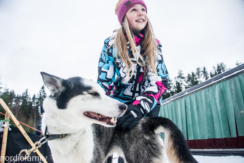 Weihnachten in Schwedisch Lappland