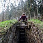 Rätsel Waldhusche Sachsen