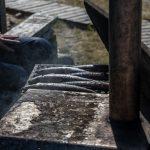 Kalajoki Bootsausflug