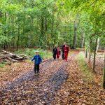 Wandern in Dänemark mit Kindern