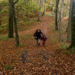 Wandern in Dänemark mit Kindern-8651