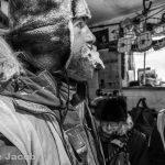 Yellowknife_snowking-7487
