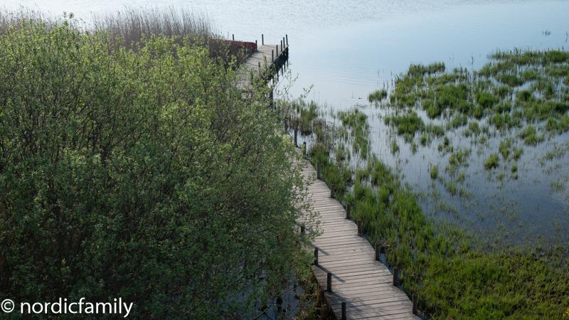 Vogelsee Tåkern