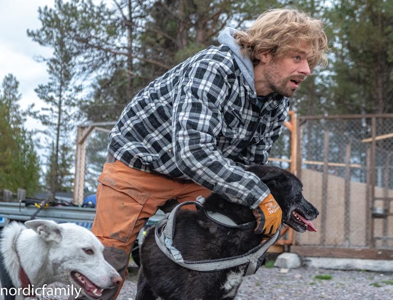 Hundeschlitten Kiruna Husky Hundeschlitten Kebnekaise