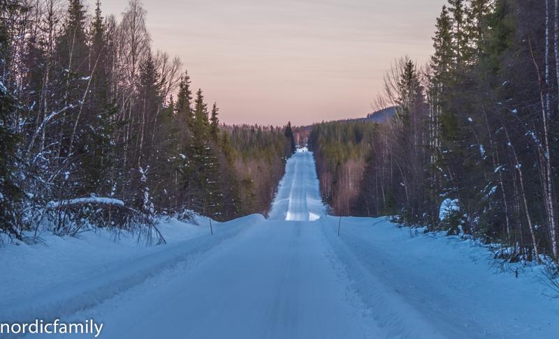 Schneise durch den Wald Wildniscamp Naarajärvi
