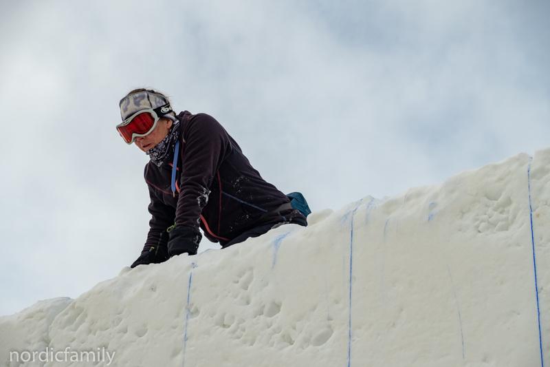 Jodine Leigh, Snowsculpture