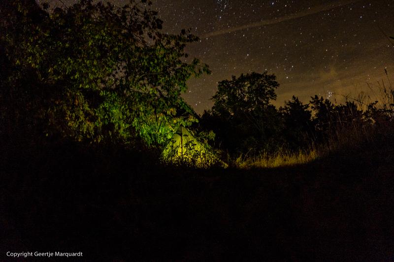Frauen Wildniscamp Sternenhimmel