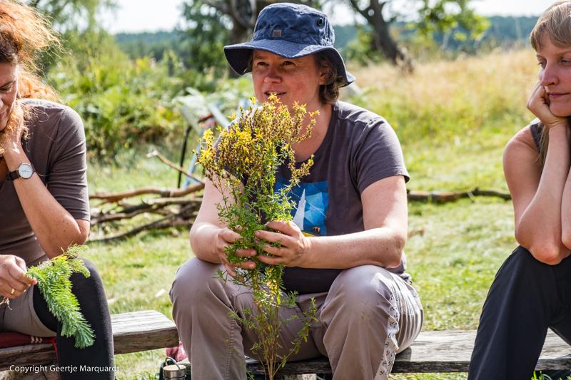 Frauen Wildniscamp Pflanzen