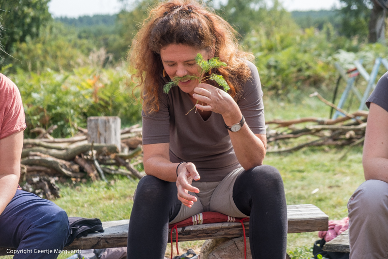 Frauen Wildniscamp Heilkräuter