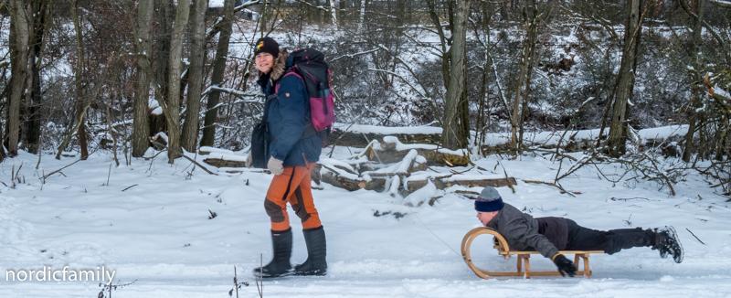 Winterausflug Hoher Fläming  Gespann