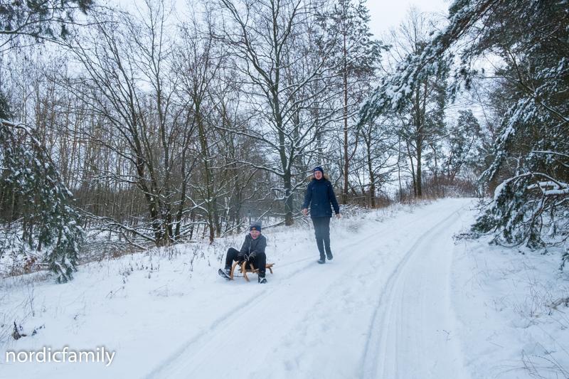 Winterausflug Hoher Fläming  Schlitten