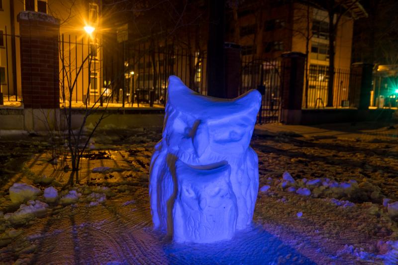 Schneeskulpturen in Potsdam Eule Anna Laura Jacobi